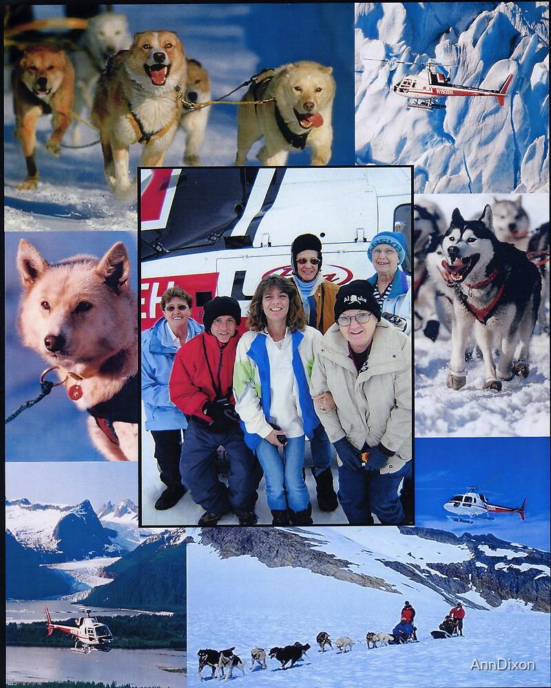 Dog Sledding on a Glacier in Alaska by AnnDixon