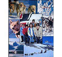 Dog Sledding on a Glacier in Alaska Photographic Print