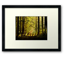 The Secret Parade II Framed Print