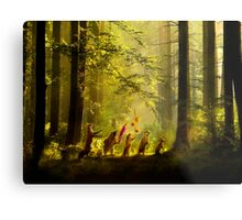 The Secret Parade II Metal Print