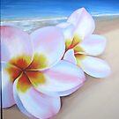 """""""Frangipani beach"""" washed up 2 by Taniakay"""