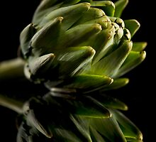 Veggie-artichoke by WalkingFish