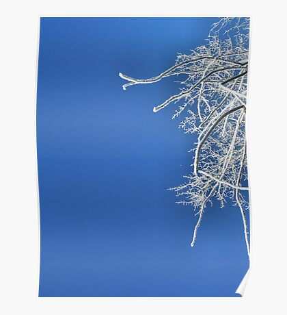 Dressed in Frost Poster