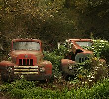 Retired farm work trucks by Cushman