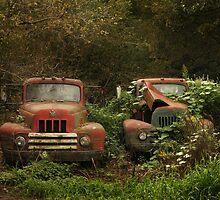 Retired farm work trucks by Cushman