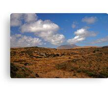 A Donegal Landscape Canvas Print