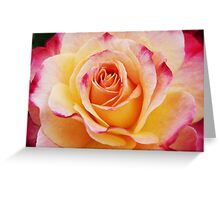 Hybrid Yellow Tea Rose Greeting Card