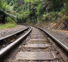 Puffing Billy Railway Track by Emma Holmes