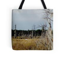 Flying Northwest Tote Bag