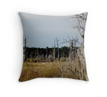 Flying Northwest Throw Pillow