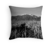 Beyond the Cat Tails Throw Pillow