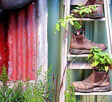 Rustic Garden by Emma Holmes