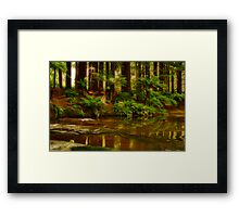 """Paradise Reflections"" Framed Print"