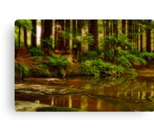 """Paradise Reflections"" Canvas Print"