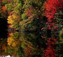 Mirror Lake Amongst the Colour Change by BGpix