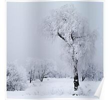Frozen willow Poster