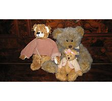 Three Teddy Bear Friends. Photographic Print