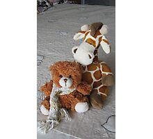 Toy Giraffe and Little Teddy Bear. Photographic Print
