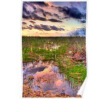 Everglades Twilight Poster
