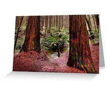 Giant Ferns Dwarfed Greeting Card