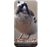 Is this for me...? (Sparrow / Mossie) iPhone Case/Skin