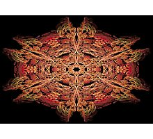Fractal 42 Photographic Print