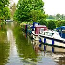Down the Canal by Trevor Kersley
