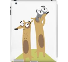 Matthew 6:33 iPad Case/Skin