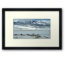 Panorama Winter'scape Framed Print
