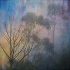 Katoomba trees by Sonia de Macedo-Stewart