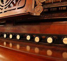 Organ by Emma Holmes