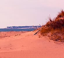 Along The Dunes by JoeGeraci