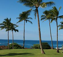 Palm Tree Paradise by Rick Champlin