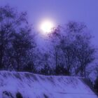 Wintermoon by pmn-photography
