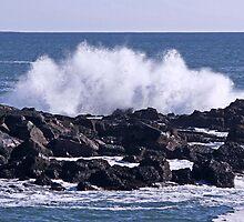 Waves Crash by Brenda Dow