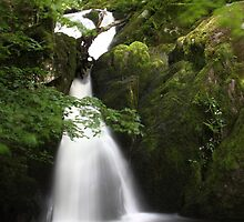 Stock Ghyll Force, Ambleside by Nick Barker
