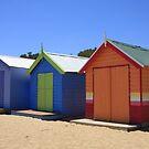 Brighton Beach Huts by Stephen Greaves