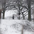 snowwhite by womoomow