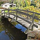 Bridge Pathway by Monnie Ryan