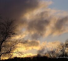 Evening Upon Us by vigor