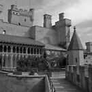 Olite Castle by Stephen Greaves