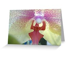 I'm An Orchid Person Greeting Card