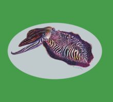 Common Cuttlefish (Sepia officinalis) One Piece - Short Sleeve