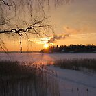 Winter Sunrise in Helsinki by linderel