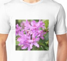 Nature is so beautiful Unisex T-Shirt
