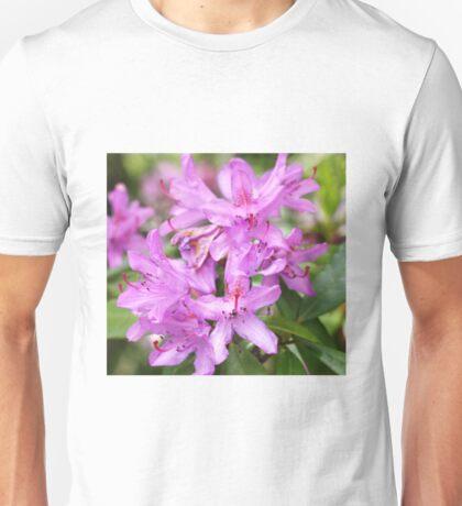 Nature is so beautiful Unisex T-Shirt