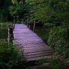 Purple Bridge by GreenmanStudio
