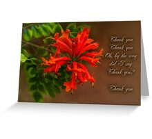 Trumpet Creeper (Pyrostegia) Greeting Card