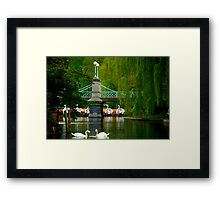 The Swans and Swan Boats Framed Print