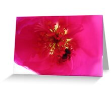 pink illusion Greeting Card